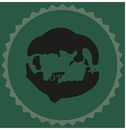 Kvaliteter MICHALA Giza kollektion